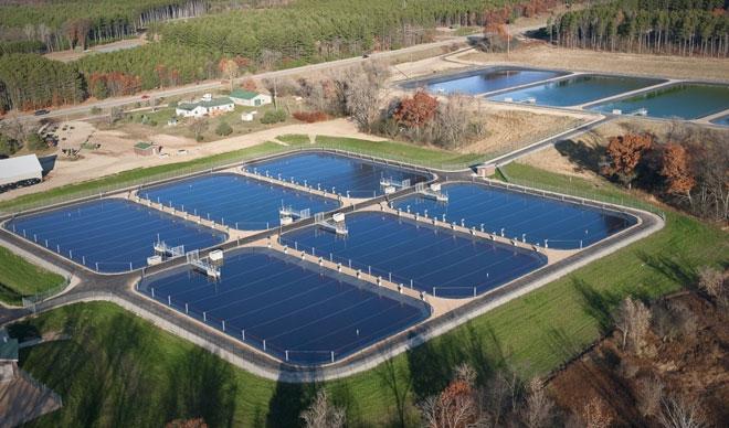 Искусственный водоем для разведения рыбы, пруд
