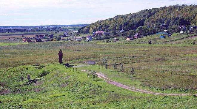 Ломоносовский район, деревня, лес