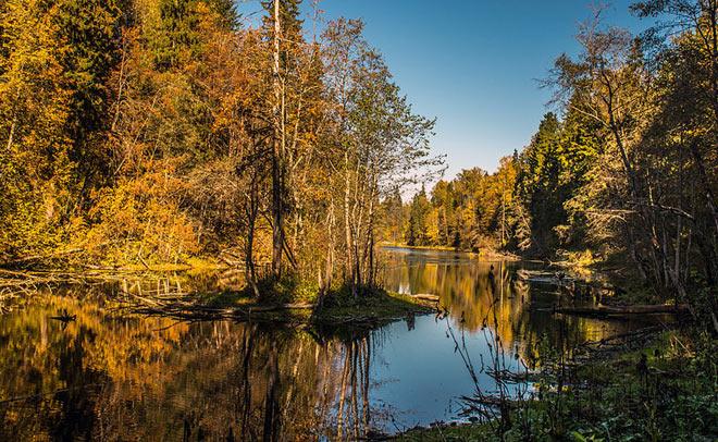 Ломоносовский район, радоновое озеро