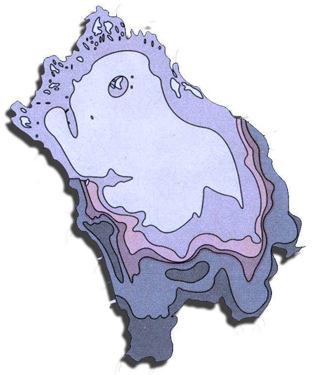 Карта распределения рыб в Ладожском озере